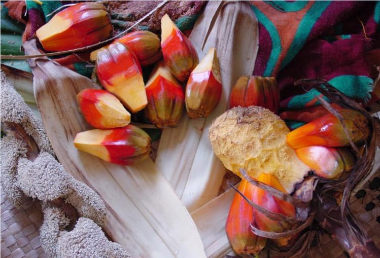 Jardin de senteurs tahitiennes