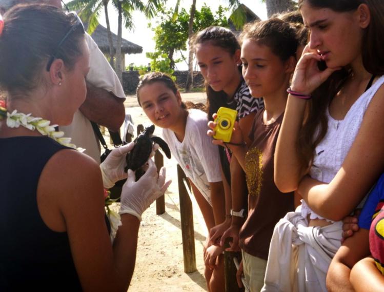 Des élèves incollables sur les océans