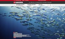 RFI lance un site web pour apprendre le français