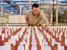 Des aliments cultivés dans une terre similaire au sol martien propres à la consommation