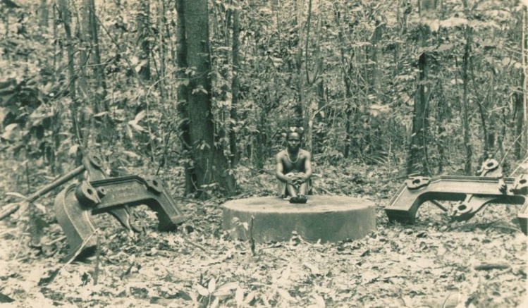 Tout ce qu'il reste de la colonisation de Port-Breton ; quelques pièces de fonte, des débris épars que la jungle a avalés.