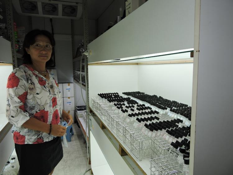Mireille Chinain, chef du laboratoire des micro-algues toxiques à l'Institut Malardé. dans son laboratoire.