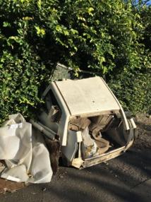 Pirae : des agents recensent les carcasses