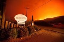 Après un déluge de feu en Californie, une Arche de Noé regagne ses pénates