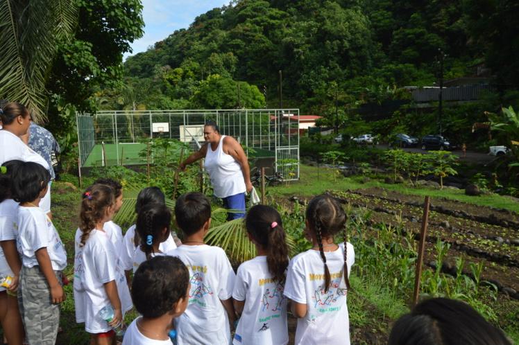 Le jardin partagé et le plateau sportif du quartier Tenaho : des projets éligibles au budget participatif.