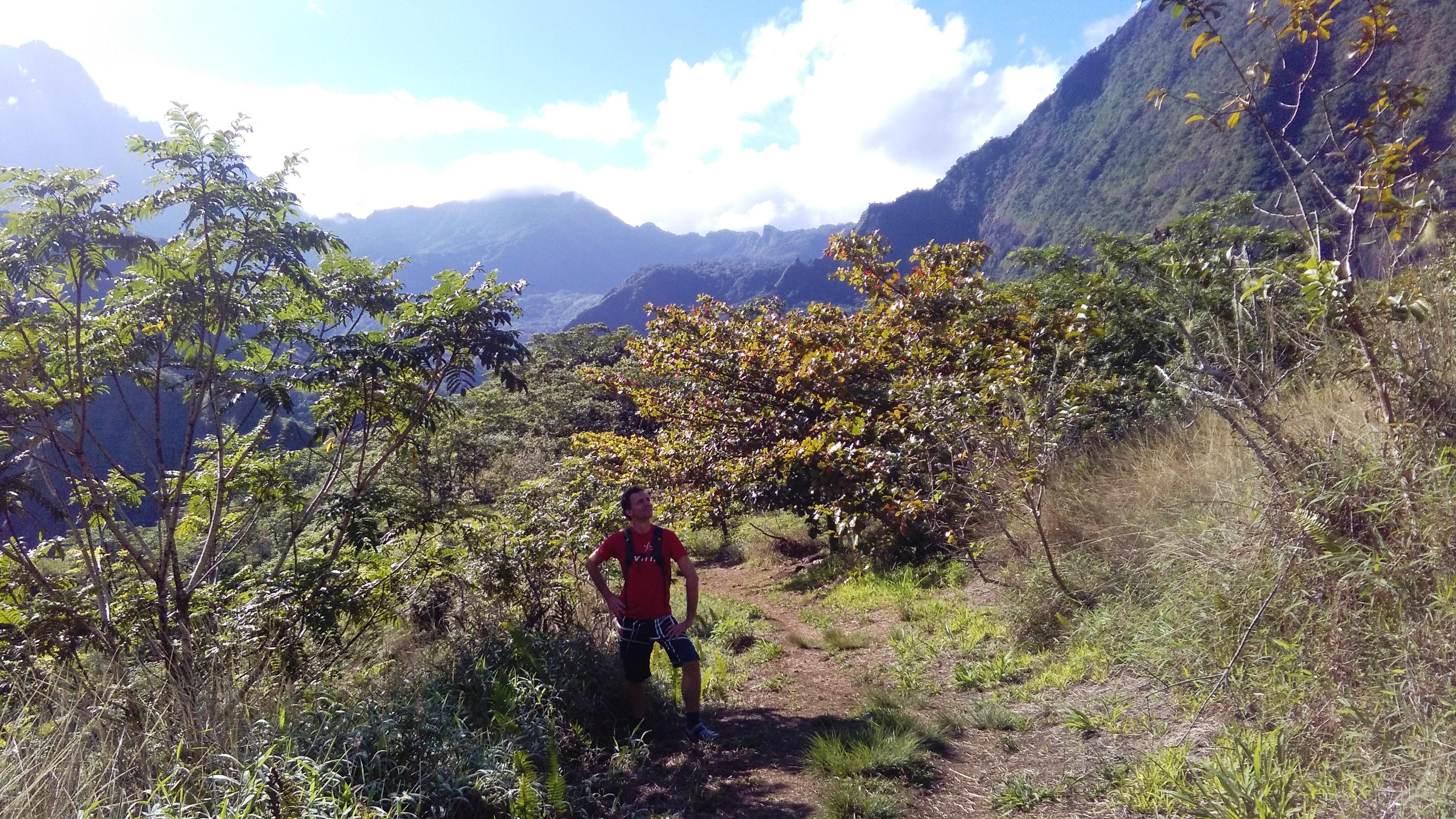 Randonnée du plateau des orangers : un vrai délice
