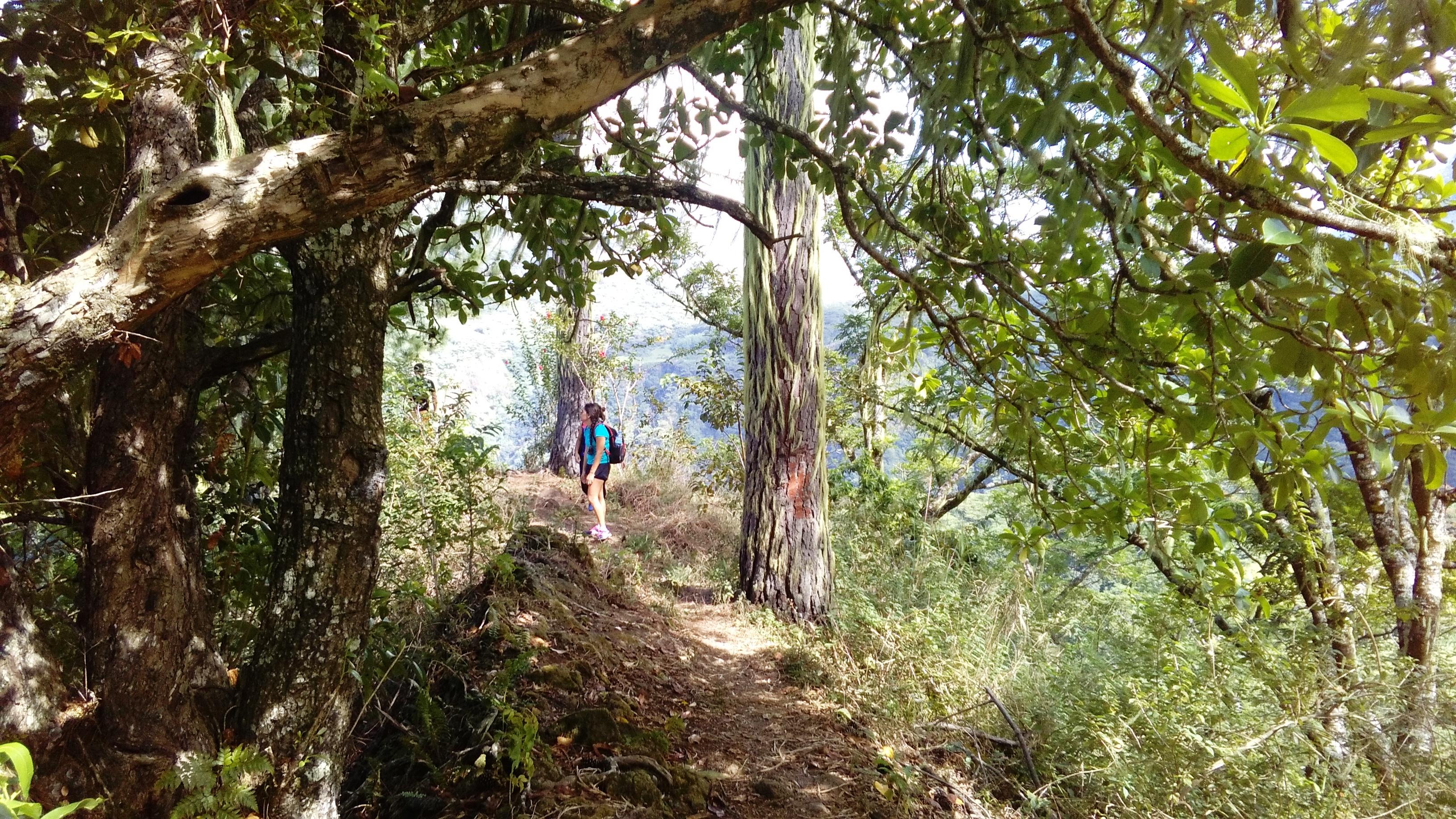 La randonnée est parfois ombragée.
