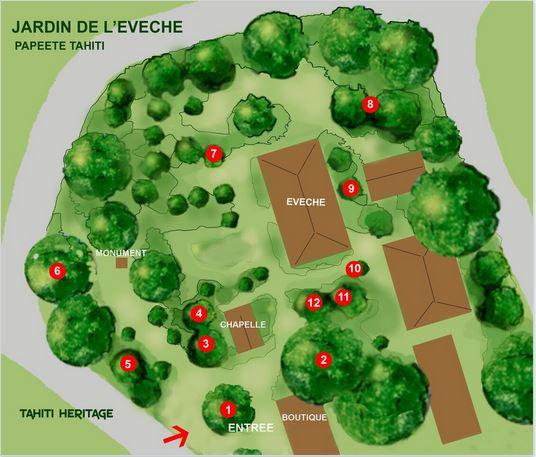 Plan des jardins de l'évêché de Papeete