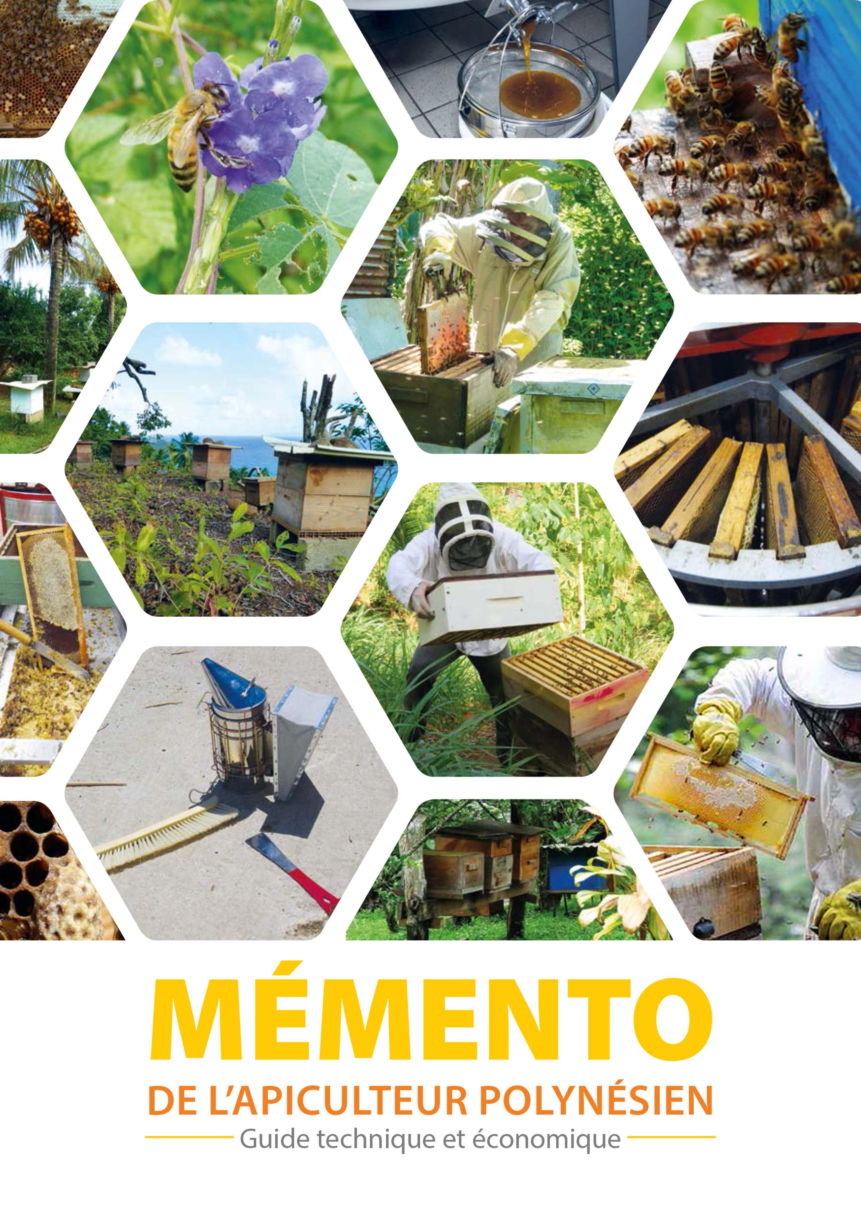 Un guide pour bien gérer ses ruches