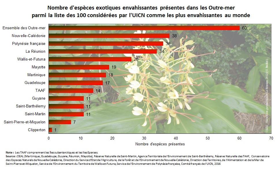 Un record pour la Polynésie : le nombre d'espèces invasives