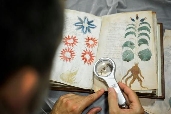 Un manuscrit des plus mystérieux cloné en Espagne