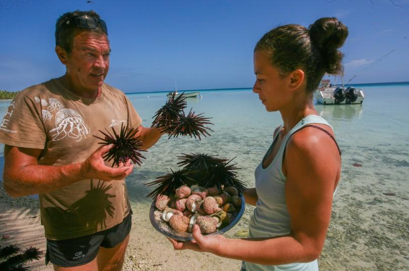 Franck et sa fille,  Heilani, vous présentent deux éléments incontournables de la gastronomie locale, les oursins crayon et les ma'oa.