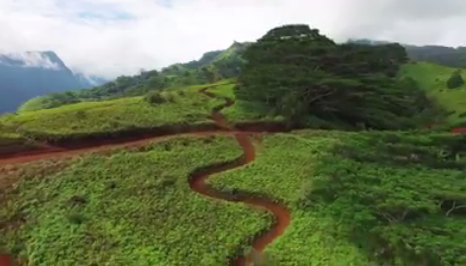 Une descente spectaculaire en VTT filmée par un drone à Punaauia