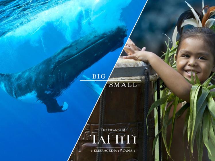 Voici un des visuels de la dernière campagne de promotion de Tahiti Tourisme