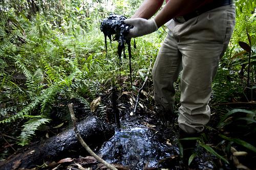 L'Equateur commence à exploiter du pétrole dans une réserve écologique
