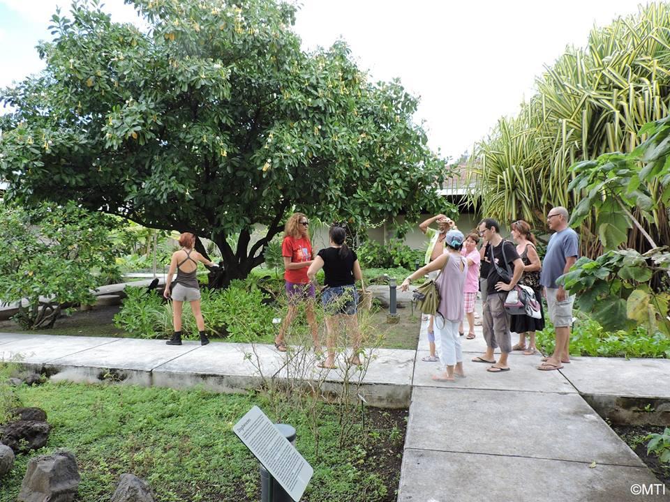 Un guide vous expliquera les vertus des plantes visibles dans le jardin de Atea.