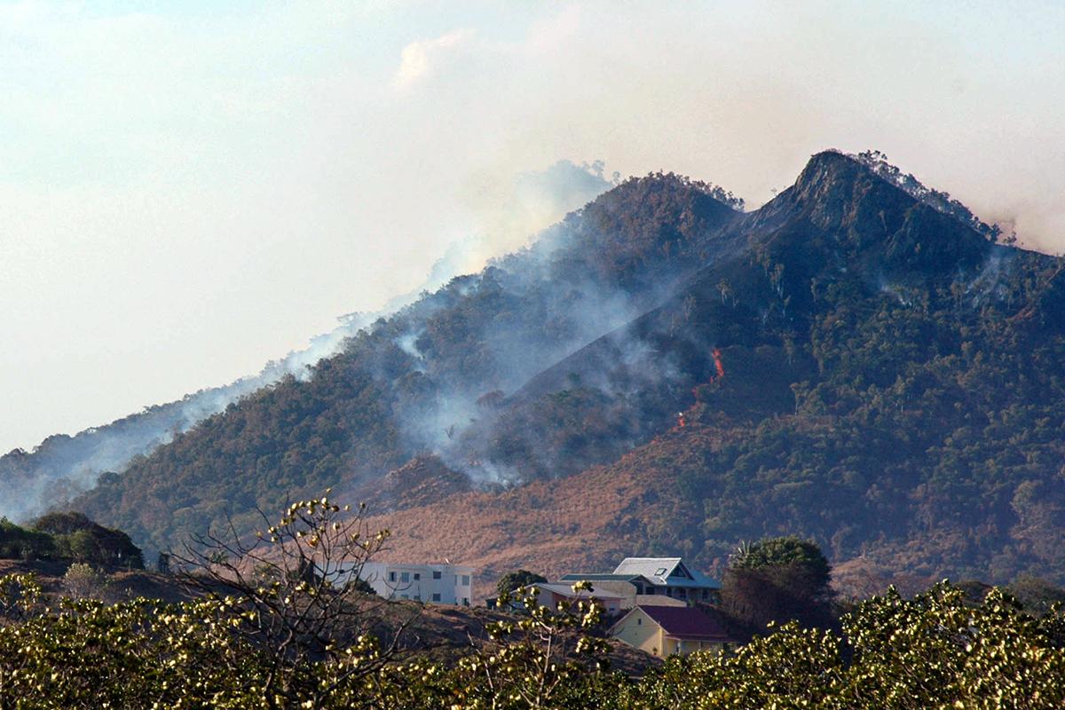 """Environ 80% de la Nouvelle-Calédonie est en """"risque élevé"""" d'incendie."""
