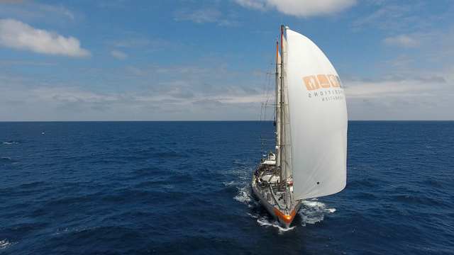Crédit : Romain Trouble, Tara Expeditions Foundation.