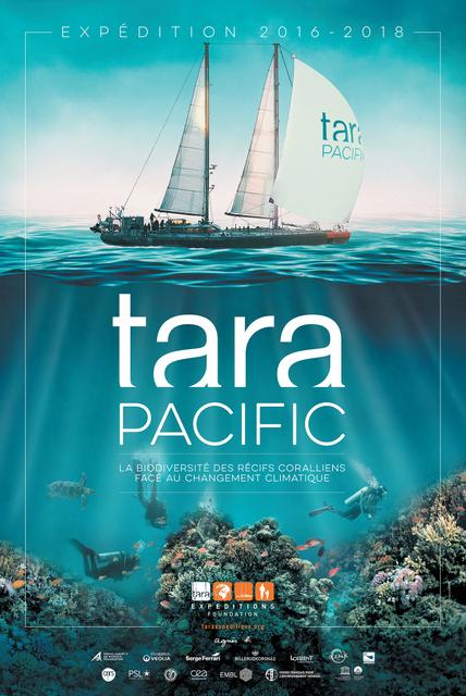 La goélette scientifique Tara jette l'ancre à Tahiti mardi