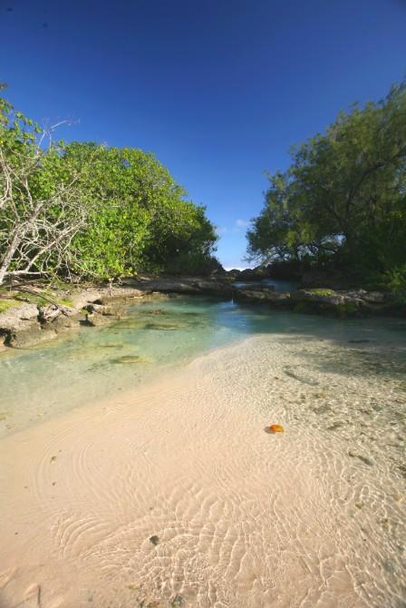 Pour les plus jeunes enfants, des petits bassins très sécurisés, abrités des vagues et courants marins, permettent de profiter pleinement des plages.