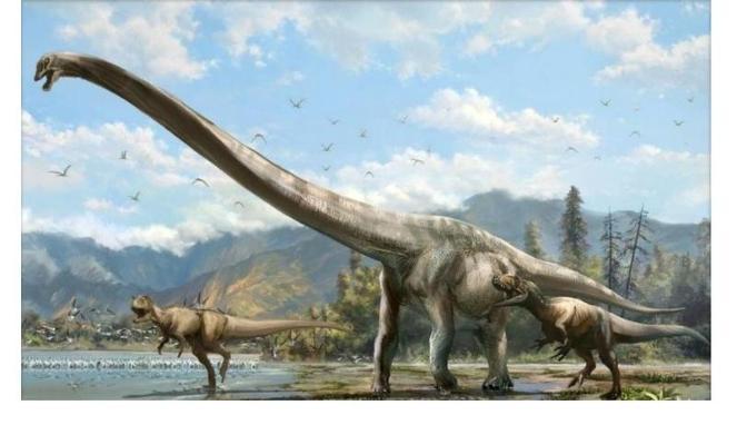 Le plus grand dinosaure du Brésil retrouvé après 60 ans dans un placard
