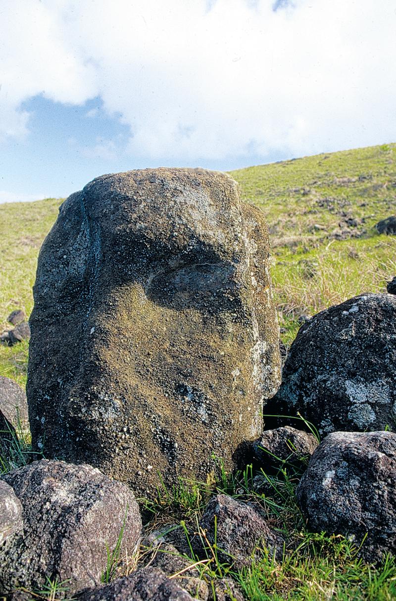 Une tête très abîmée du véritable ahu Akivi, situé à deux kilomètres de l'ahu Atiu.