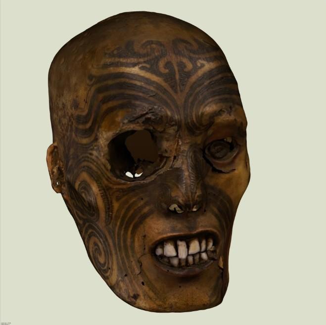 Une des têtes que la France détenait depuis 1875, celle du musée de Rouen. Elle a été restituée à la Nouvelle-Zélande en mai 2011.