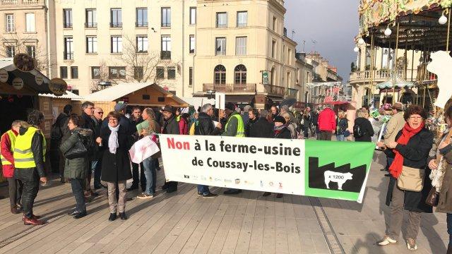 Vienne: manifestation contre un projet de ferme-usine de 1200 taurillons