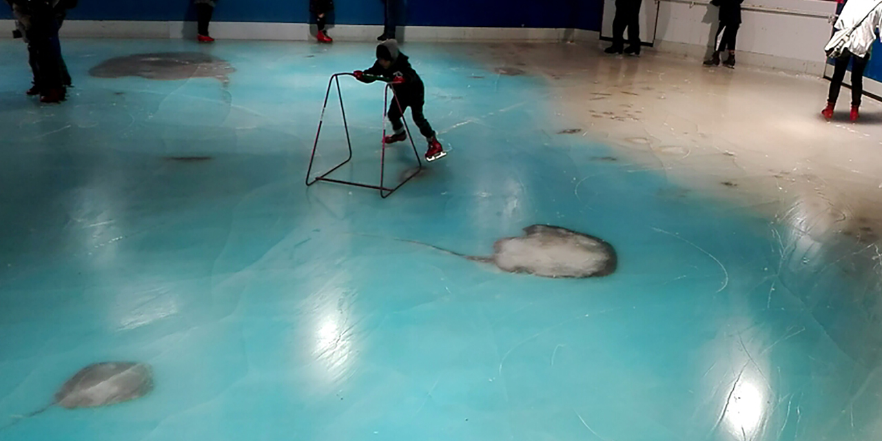 Au Japon, haro sur une patinoire avec vue sur 5.000 poissons congelés