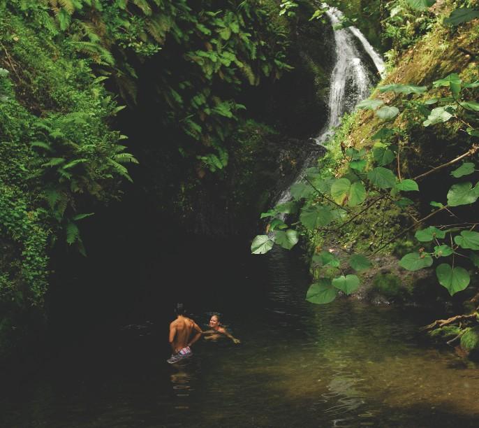 Dans l'intérieur de l'île de Rarotonga, les amateurs de nature vierge seront comblés.