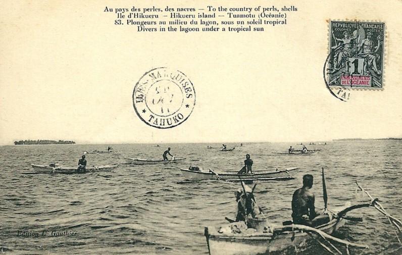 Au pays des perles, des nacres en 1912, île de Hikueru (Tuamotu). Le plongeur remonte après un plongeon de 1 à 3 minutes. Photo Lucien Gauthier