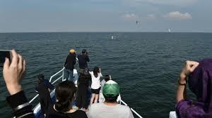 Observer les baleines au large de Bangkok, une rareté au royaume du tourisme de masse
