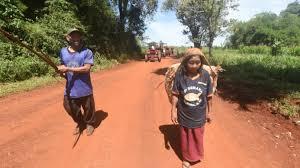 Les indiens guayakis, exilés de leur forêt, veulent un bout de terre