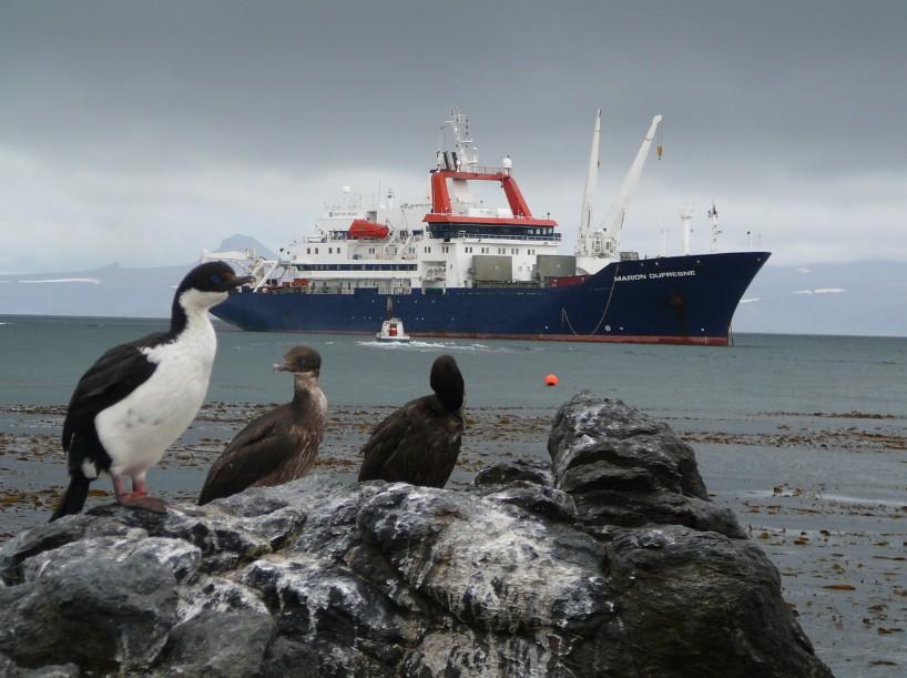 """Le """"Marion-Dufresne"""" au large de Port-aux-Français, aux Kerguelen. Le navire des Terres australes et antarctiques françaises porte le nom du découvreur de plusieurs îles du sud de l'océan indien, proches de l'Antarctique."""