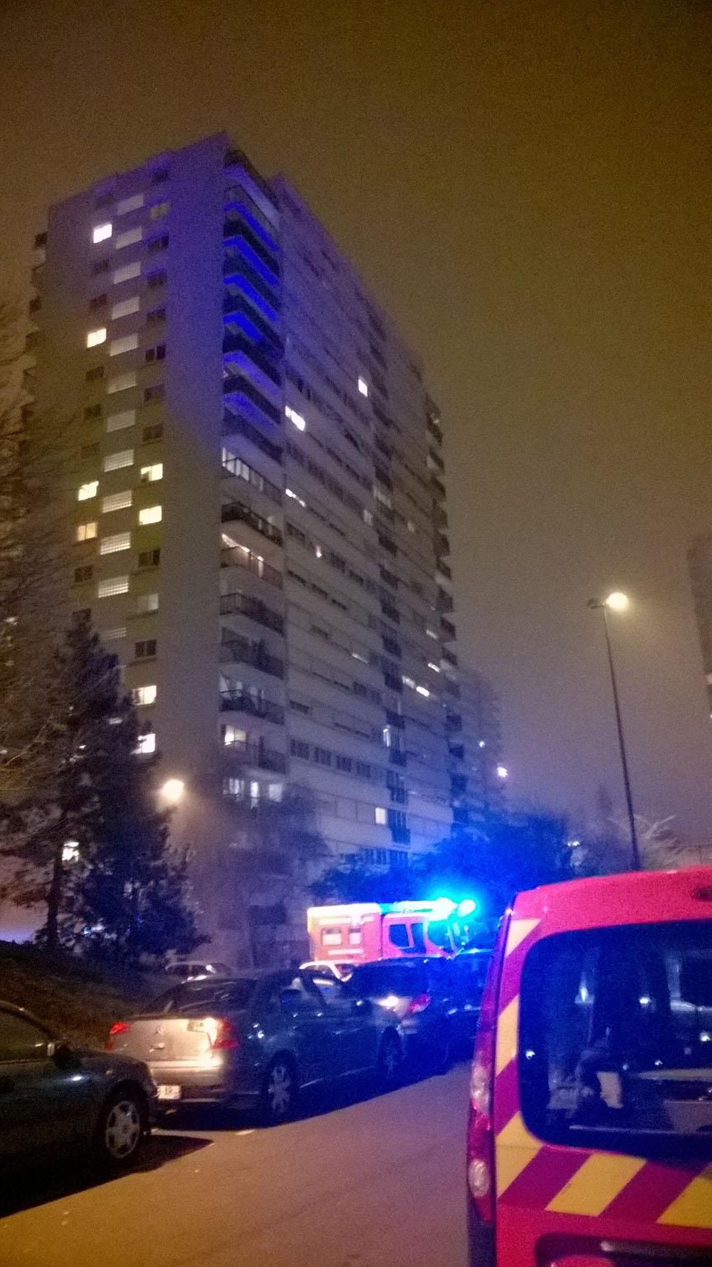Incendie meurtrier à Fontenay-sous-Bois: la mère soupçonnée d'un double infanticide