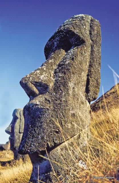 """Si les Pascuans anciens ont sculpté tous les moai, il est clair que le """"tiki"""" Tuku Turi n'a probablement pas les mêmes origines. Mais ceux qui l'ont réalisé n'ont pas signé leur œuvre et ont emporté leur secret dans la tombe…"""