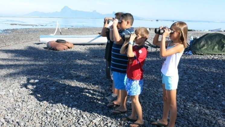 """L'école 2+2=4 a obtenu son label """"Eco-école"""".  Durant près de deux mois, il y a deux ans les élèves en CM2 ont observé la baleine à bosse."""