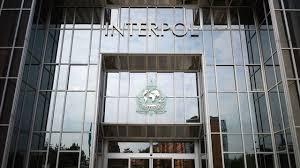 Une base de données d'Interpol au coeur de la lutte contre la pédophilie