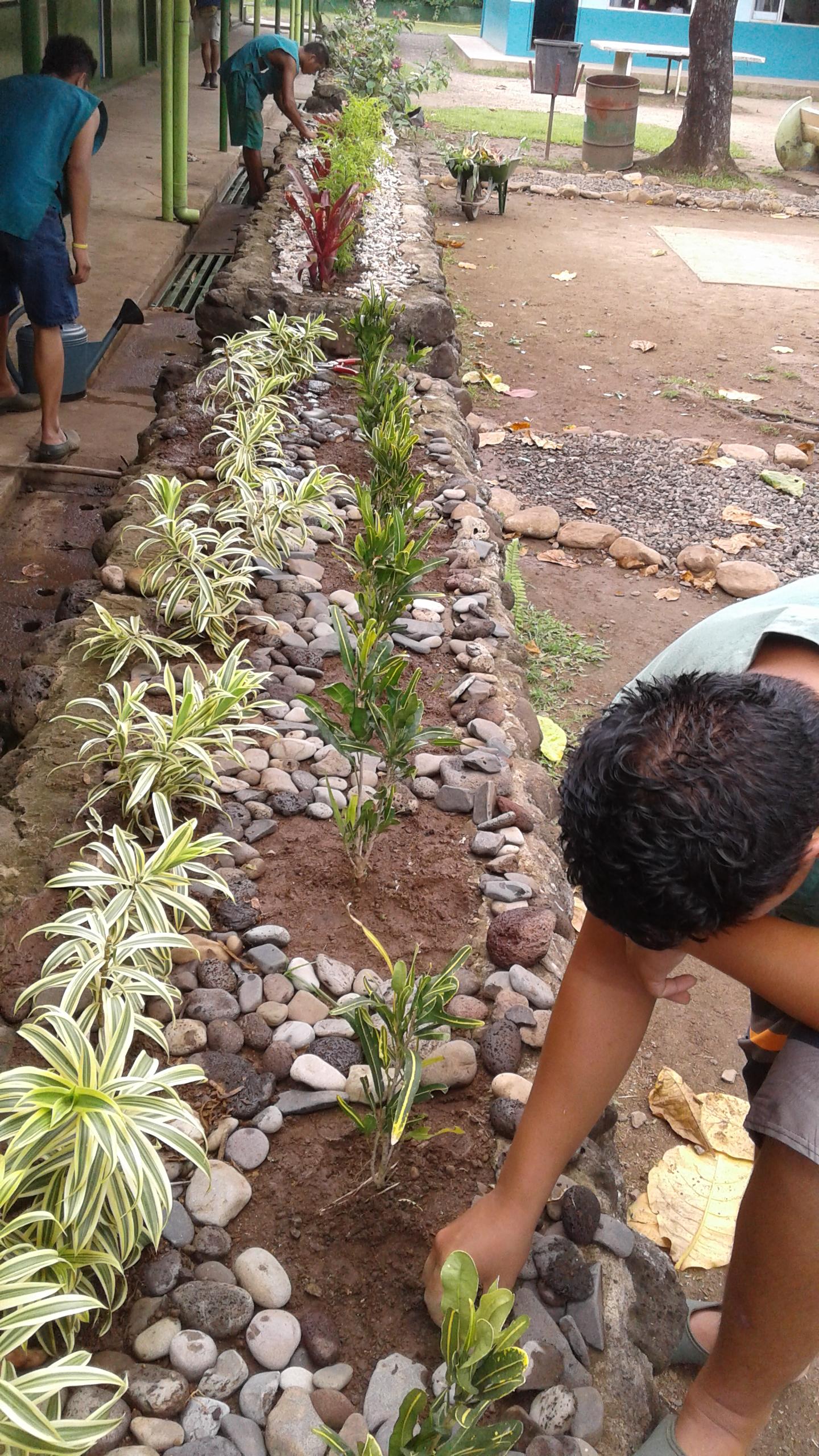 1- Les actions d'embellissement du collège réalisées par les élèves du Cetad de Paopao.