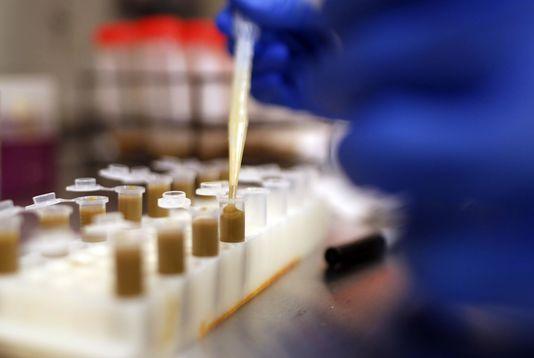 Chine : mise en garde contre le développement de bactéries résistant aux antibiotiques