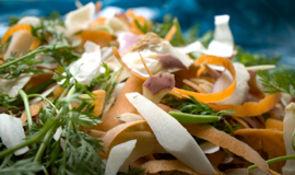 Les Parisiens vont avoir une nouvelle poubelle, pour les biodéchets