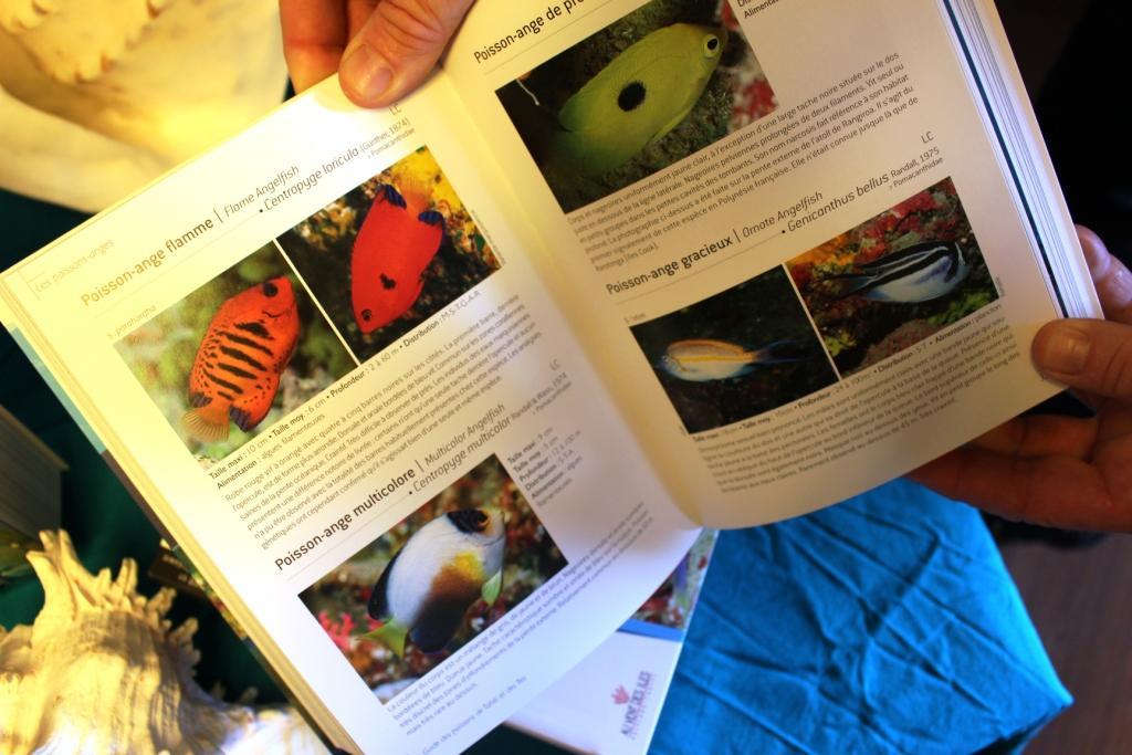"""Guide des poissons : """"la 4ème édition est presque un nouveau guide"""""""
