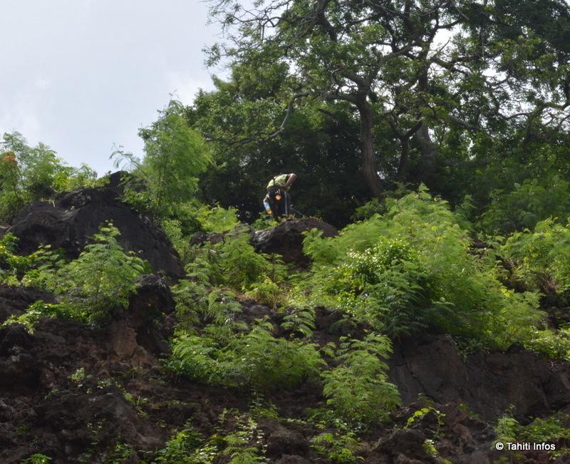 9 grimpeurs et leur chef étaient suspendus à la falaise pour accrocher les grillages