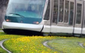 """Des """"chat bots"""" novateurs pour trouver son chemin dans le tramway"""