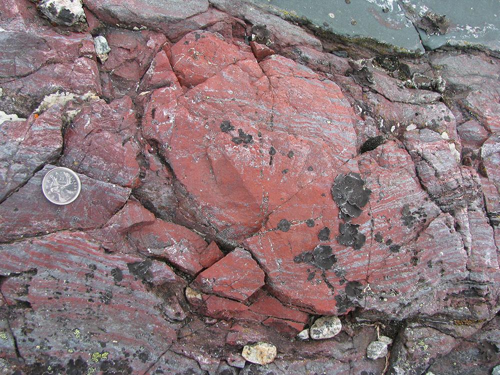 La rage de vivre: des microfossiles déjà sur Terre il y a quelque 4 milliards d'années