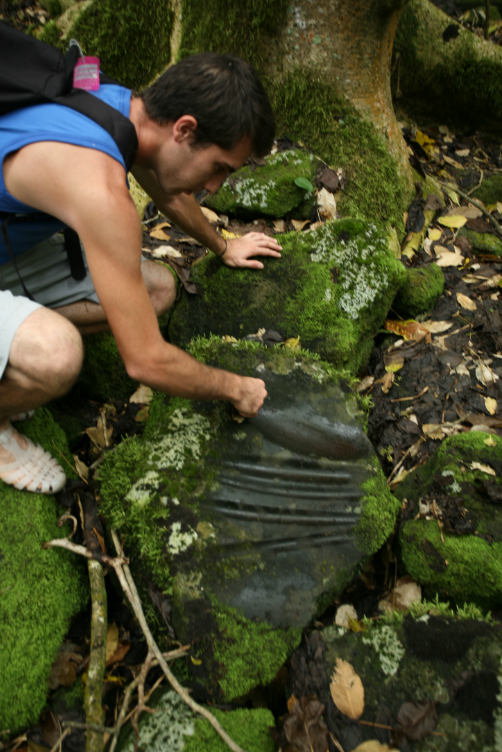 Une pierre avec des emplacements pour aiguiser les herminettes et une marque plus large pour le polissage.