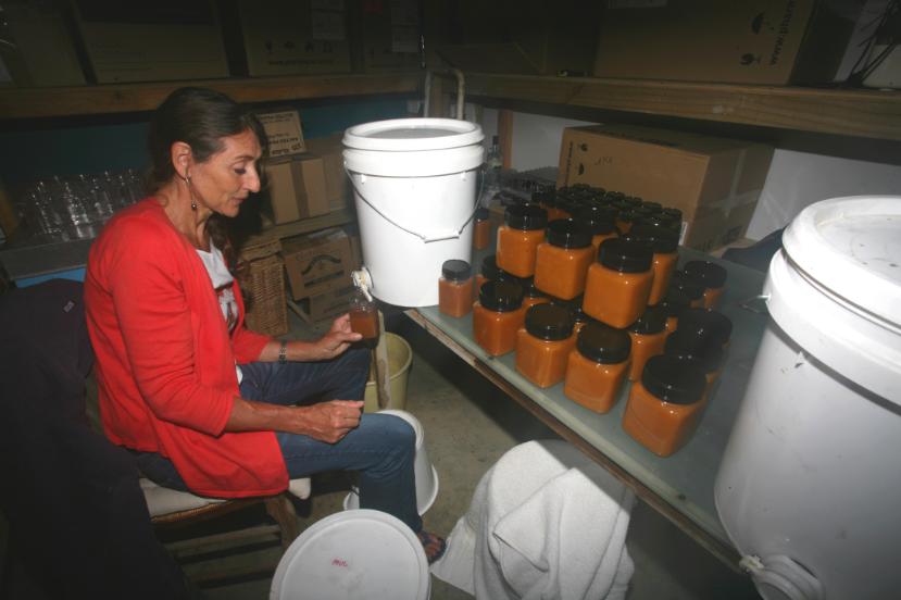 Carole est concentrée : une fois le miel extrait, il faut le préparer pour le commercialiser plus facilement que dans des touques de vingt litres.