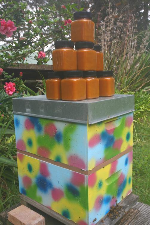 Une ruche de Carole et de Frank, avec un échantillon de miel produit : une bonne année, chaque ruche fournit 40 kilos de miel.