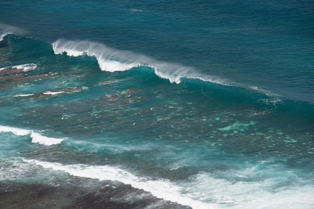 Important blanchissement corallien observé dans la baie de Avera à Rurutu le 28 avril 2017 (Photo : Danee Hazama).