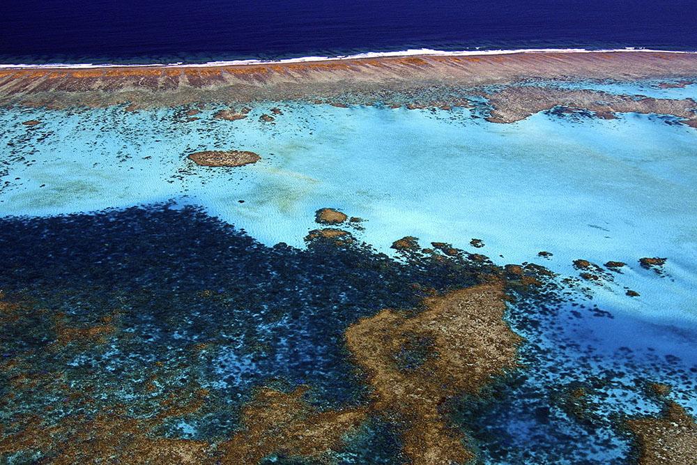 Les récifs coralliens, des barrières de protection fragilisées par l'érosion des sols marins